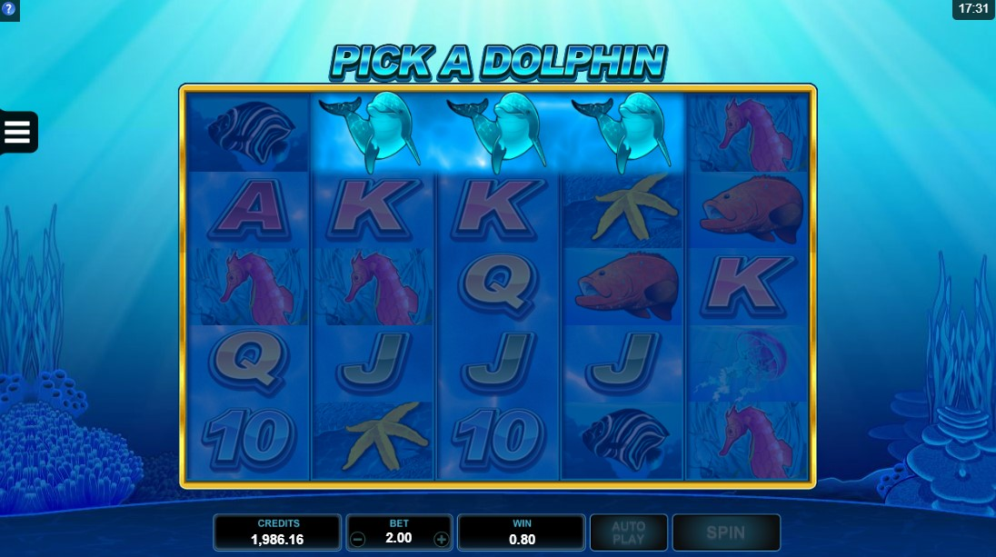 Dolphin Coast играть онлайн