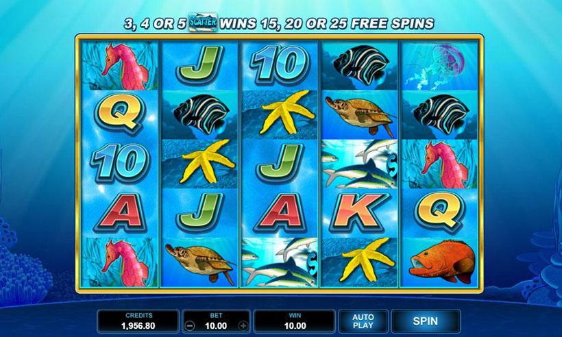 игровые автоматы дельфины
