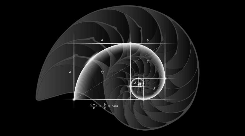 стратегии игры в рулетку фибоначи