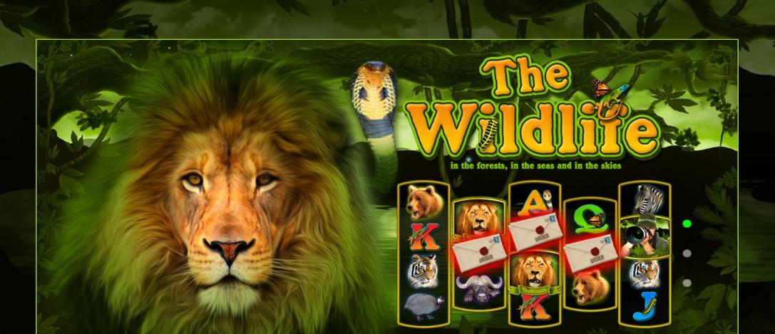 Играть бесплатно The Wildlife