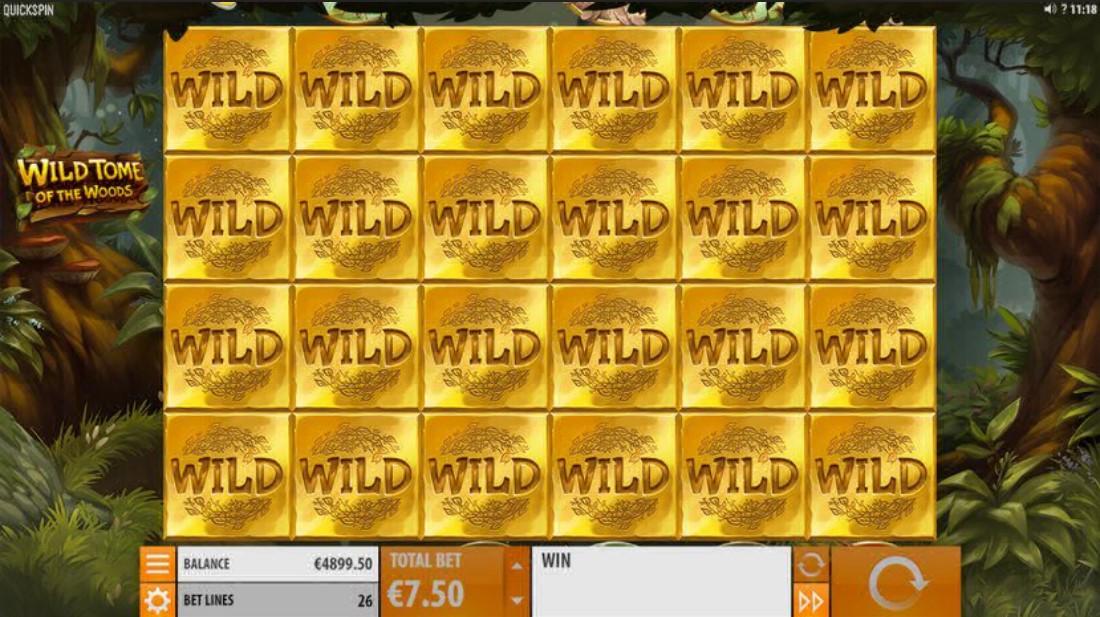 Играть бесплатно Wild Tome of the Woods
