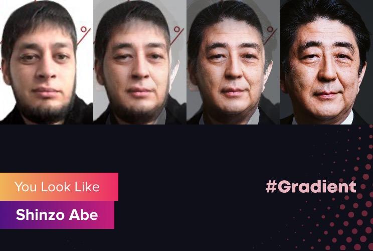 Ludosik Gradient Shinzo Abe