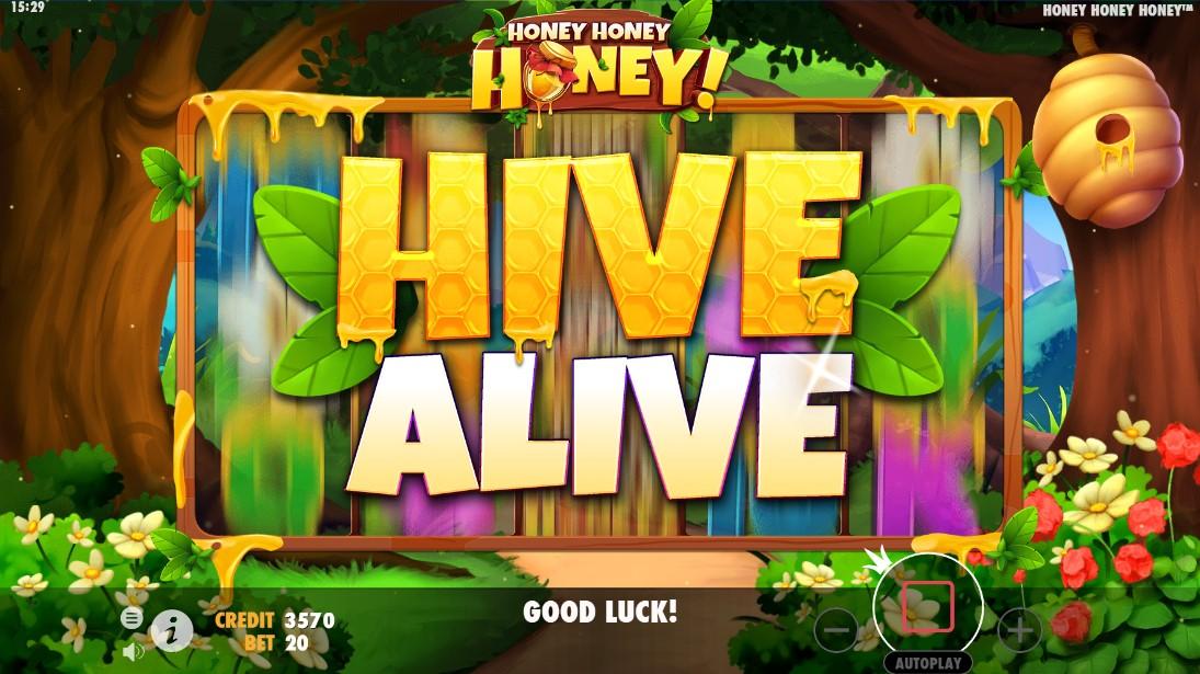 Honey Honey Honey бесплатный слот