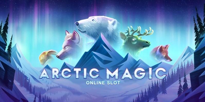 Играть Arctic Magic бесплатно