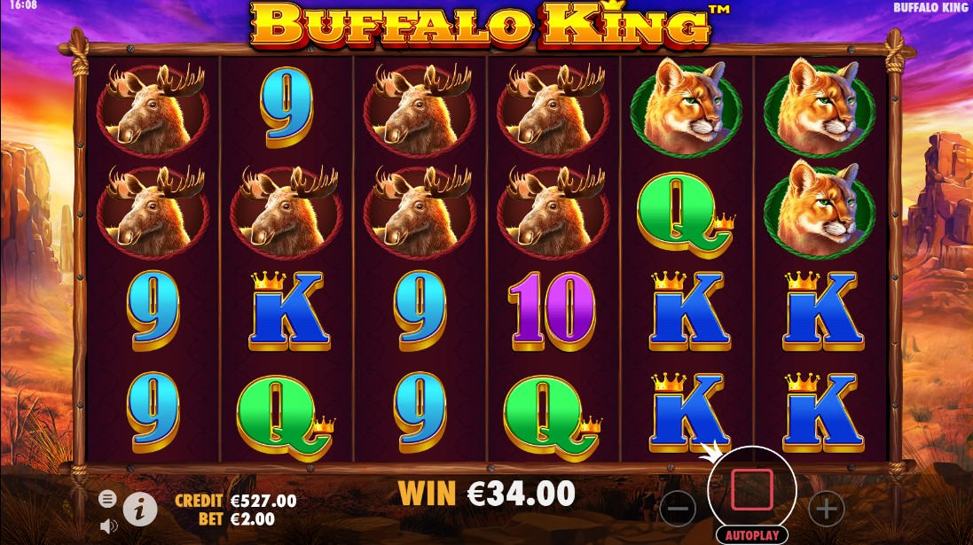 Играть бесплатно Buffalo King