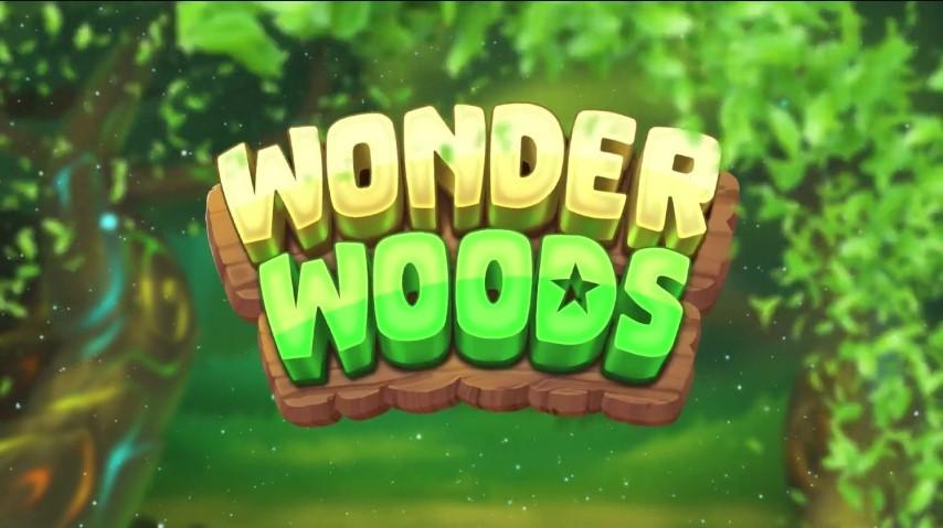 Играть Wonder Woods бесплатно