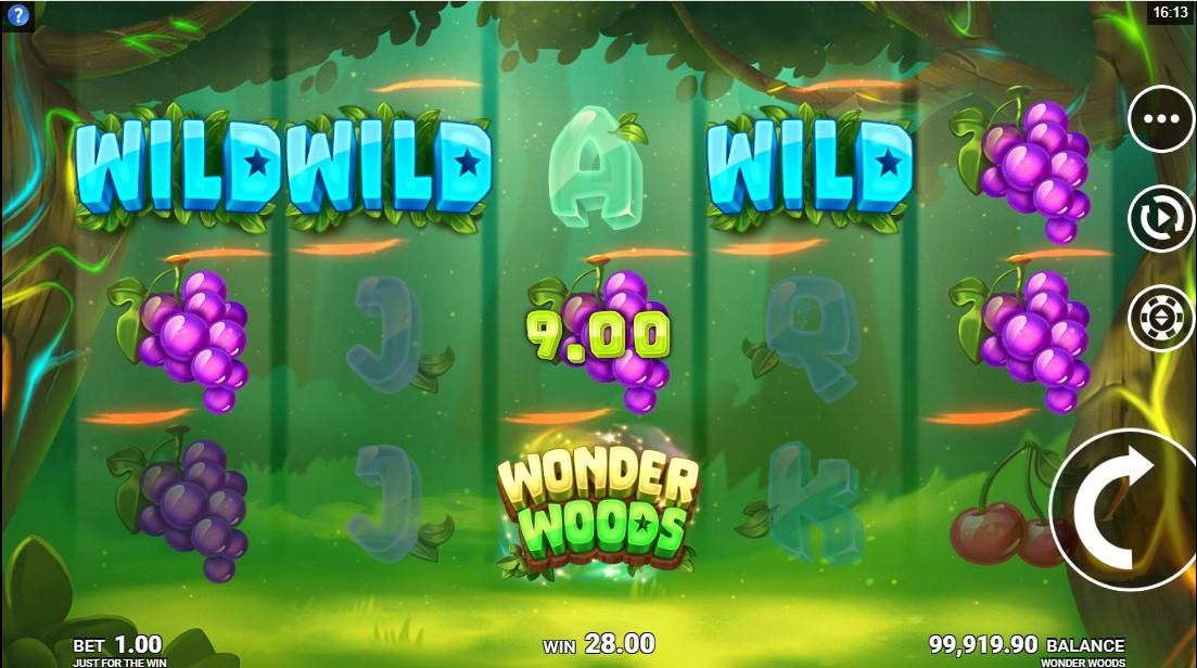 Играть бесплатно Wonder Woods
