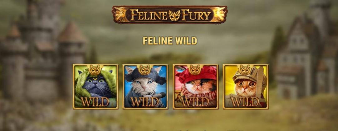 Играть Feline Fury бесплатно