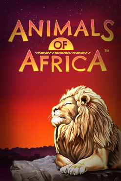 Играть Animals of Africa онлайн